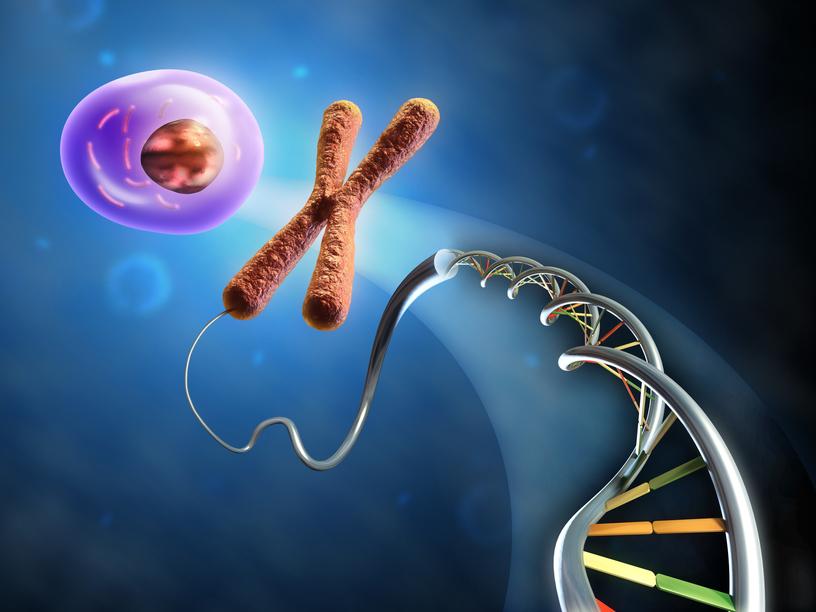 стволовые клетки применение, стволовые клетки для омоложения