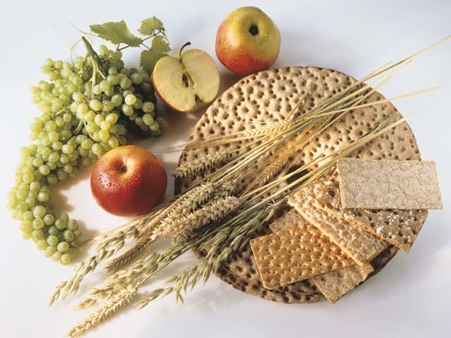пророщенные зерна для похудения, стевия для похудения, Советы диетолога Светланы Фус, хлебцы для похудения