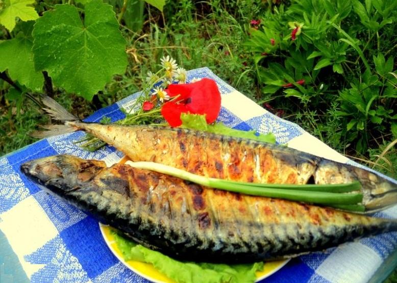 скумбрия на мангале рецепт, как приготовить скумбрию на мангале, Сергей Калинин рецепты, сергей калинин скумбрия с овощами, скумбрия на мангале от сергея калинина