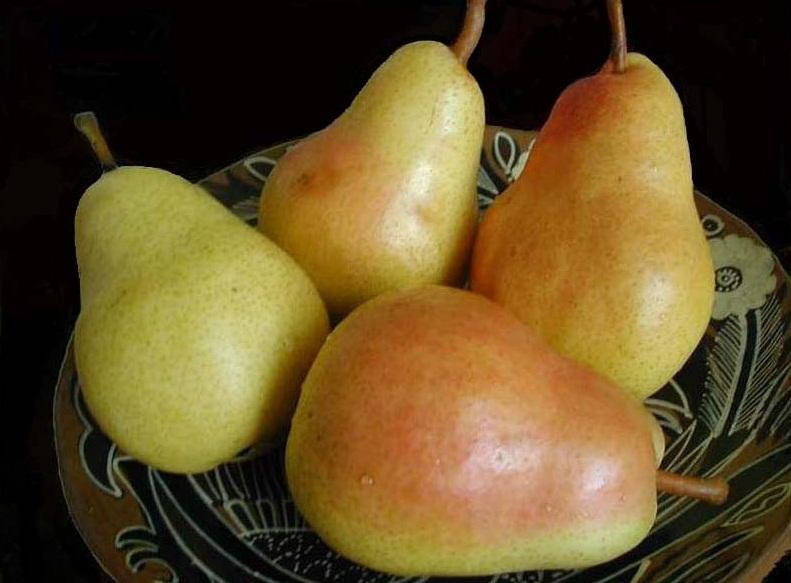 рецепты с грушами, что приготовить из груш
