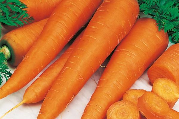 Все буде смачно, все буде смачно морковь, блюда из моркови