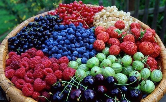 Все буде смачно, все буде смачно ягоды, блюда из ягод